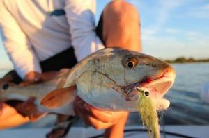 HOOK EM Flats Fishing Charters