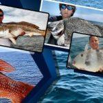 Georgia Sport Fishing Charters