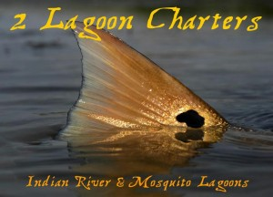 2 Lagoon Charters - Mosquito Lagoon / Indian River