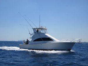 Blue Safari Sport Fishing